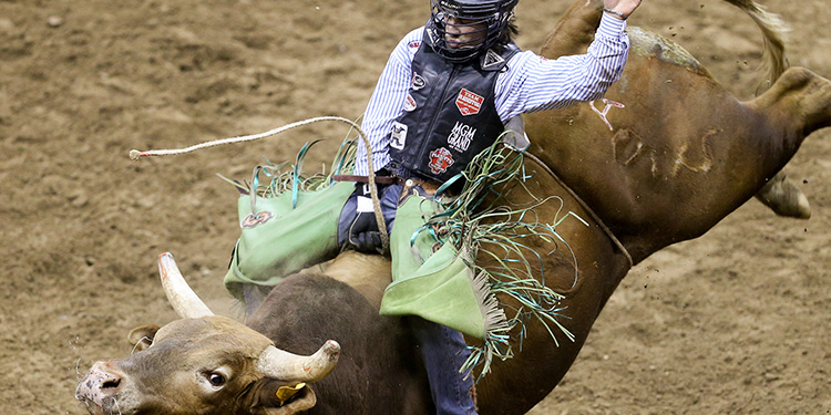 Cheap San Antonio Stock Show and Rodeo Tickets | Mark's Tickets