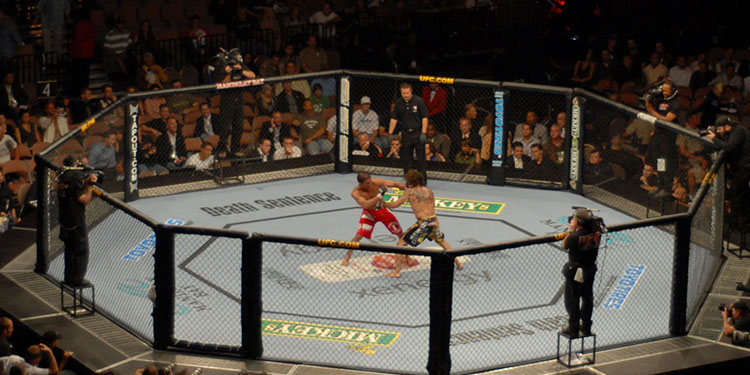Cheap UFC - Ultimate Fighting Championship Tickets | Mark's Tickets