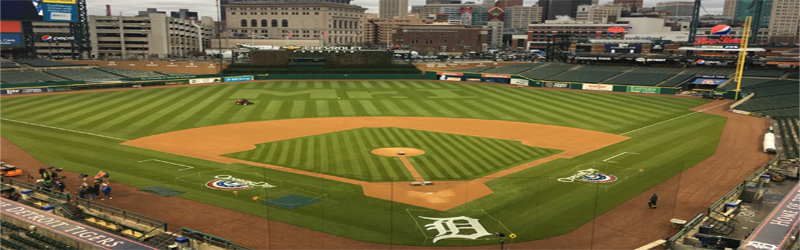 Detroit Tiger Tickets